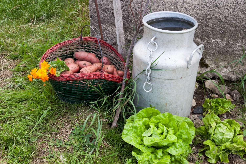 La cc du saulnois recherche un jardinier composteur de for Recherche jardinier