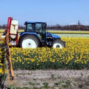Comment se passer des pesticides ?